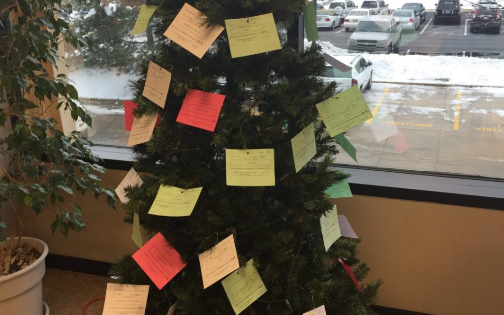 The Giving Tree Rabine Group Employees Give Back Rabine